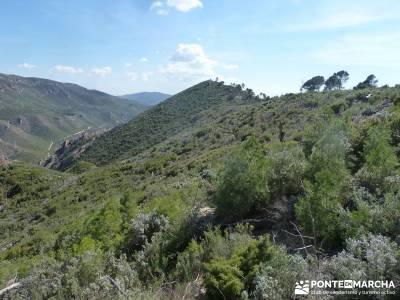 Sierra de Enmedio - Río Guadiela;ruta de los pescadores arenas de san pedro rutas y senderos